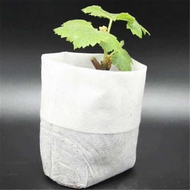 Túi vải không dệt ươm cây